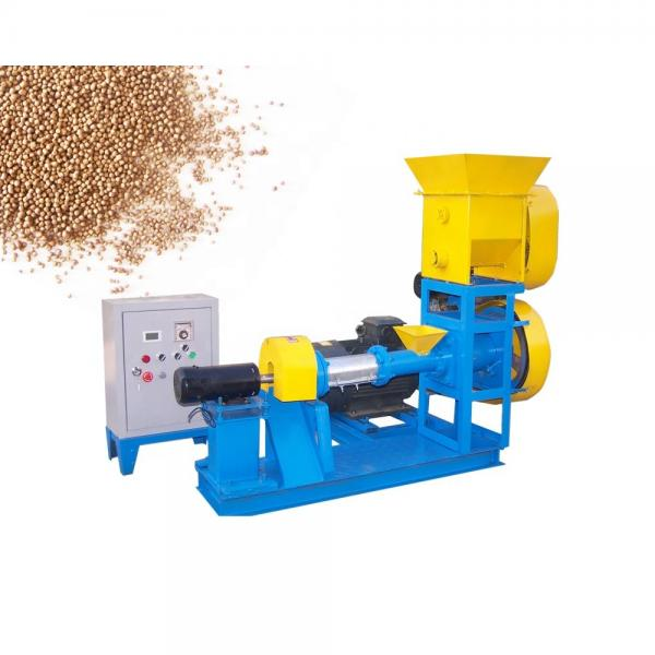Stainless Steel Automatic Pet Food Extruder Machine / Dry Pet Food Machine #2 image